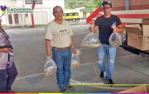 Jimbitono recibió 10 mil alevines de Tilapia.